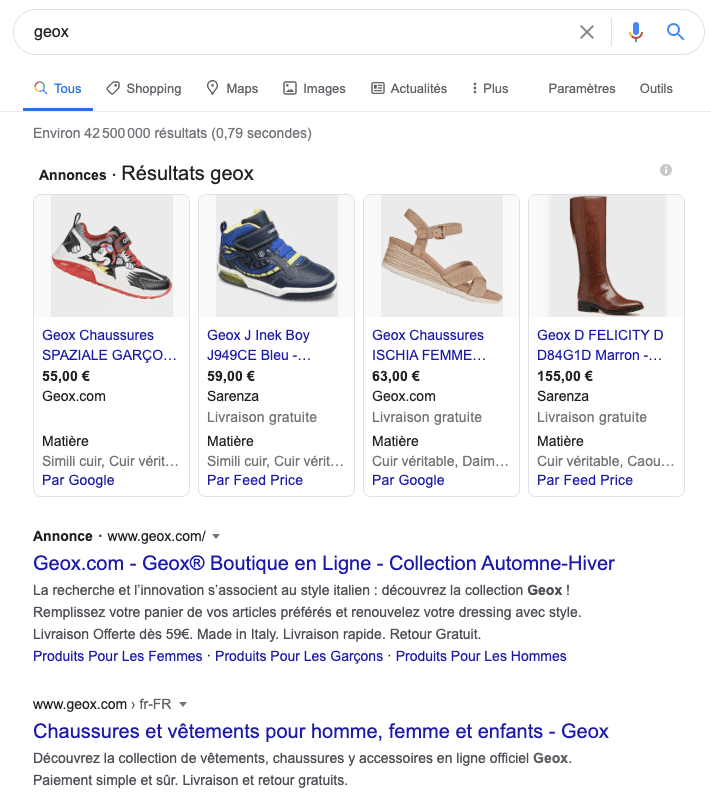 exemple gestion Google Ads - Geox Plug and Pulse