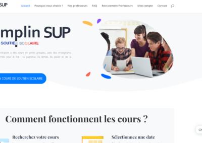 capture d'écran site web Tremplin sup par plug and Pulse